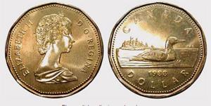 1 dollar 2008 - Lucky Loonie  Elizabeth II