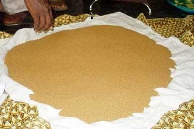 Almamy Gold Mining & Trading Company Sa
