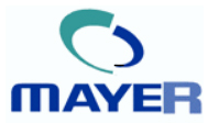 Mayer Information Technology