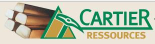 CARTIER RESOURCES