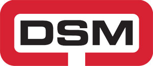 DSM Industrial Engineering Ltd