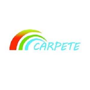 Shijiazhuang Carpete Hardware Products Co.,Ltd