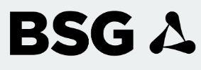 BSG Global Recycling