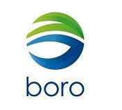 Corporativo Boro