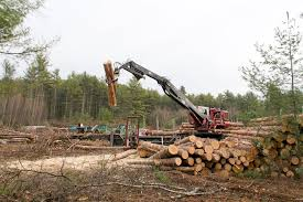 Timber harvests in the US and Canada improved in 2013
