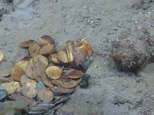 Nearly 13.5K Gold and Silver Coins Recovered from Shipwreck Site