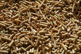 RISI: Global wood pellet demand to double over next 10 years