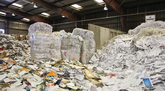 memphis paper