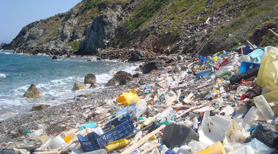 Plastics trade body responds to study on marine debris