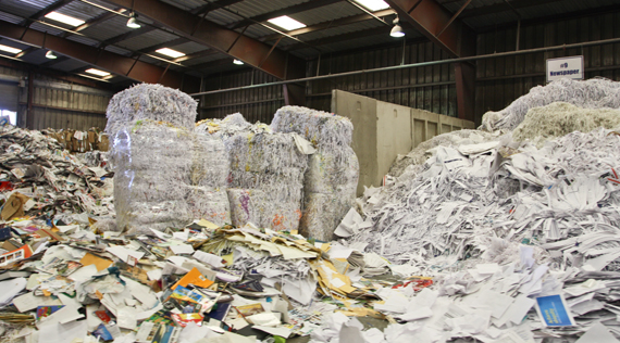 US Scrap paper exports to India grew significantly in 2014