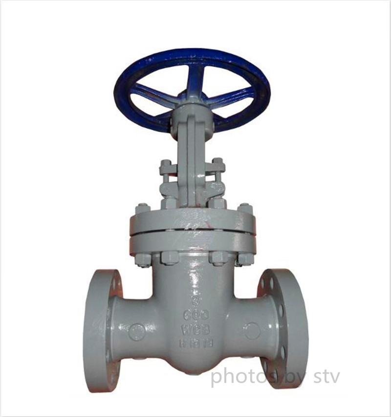 Cast Steel Gate Valve,600LB,3 Inch,API 600,Flanged End
