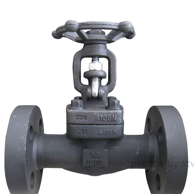 Integral Flange Forged Gate Valve,DN20, 1500LB,API 602
